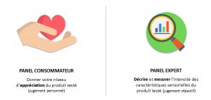 Infographie décrivant le panel consommateur et le panel expert
